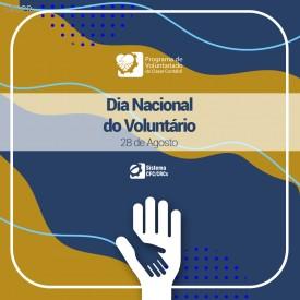Dia Nacional do Voluntariado é celebrado no Sistema CFC/CRCs