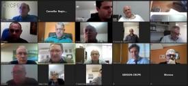 Comissão Consultiva do CRCPR realiza reunião virtual